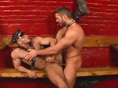 Muscular hairy studs fucking in a dark dungeon here